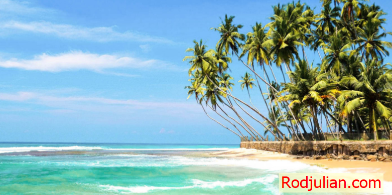 The most beautiful places in Sri Lanka!Travel