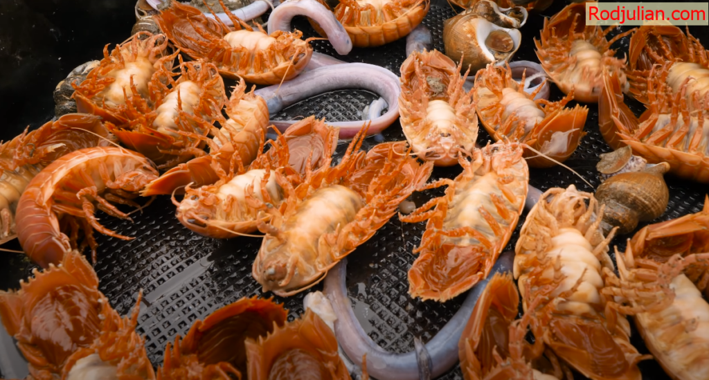 1 day challenge to earn seafood under the sea in Japan! Delicious food in Japan