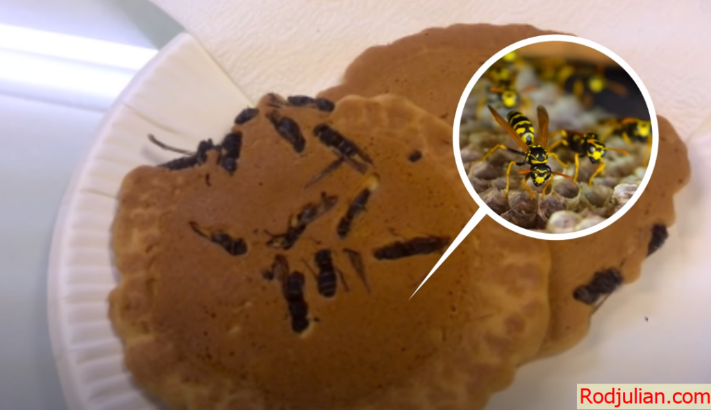 The most rare and strange foods in the world