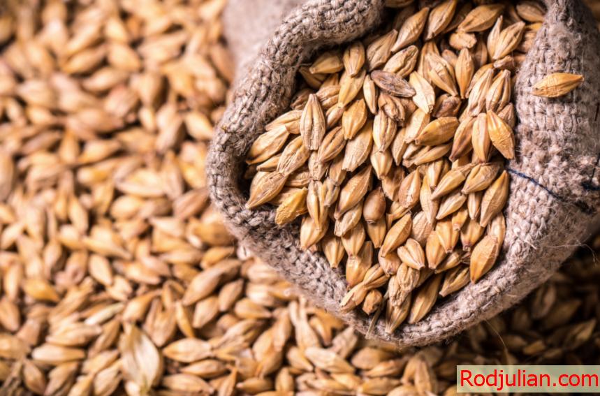11 health benefits of barley